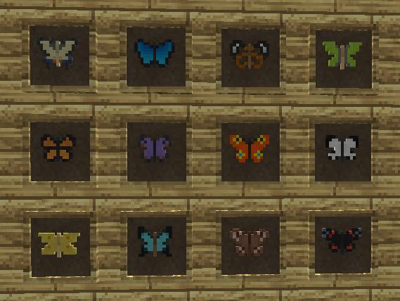 коллекция бабочек.png